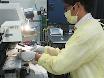 Mikropunktion Bowmans Platz bei Mäusen durch die 2-Photonen-Mikroskopie thumbnail
