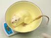 Ponction de la veine sous-clavière comme méthode Alternative de prélèvement d'échantillons de sang chez les Rats thumbnail